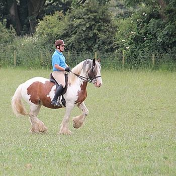 horseandhound