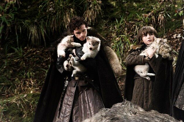Robb and Bran Stark with Dire Wolf pups 630x419 - دایرولف ها : از واقعیت تا تخیلات جرج آر.آر مارتین