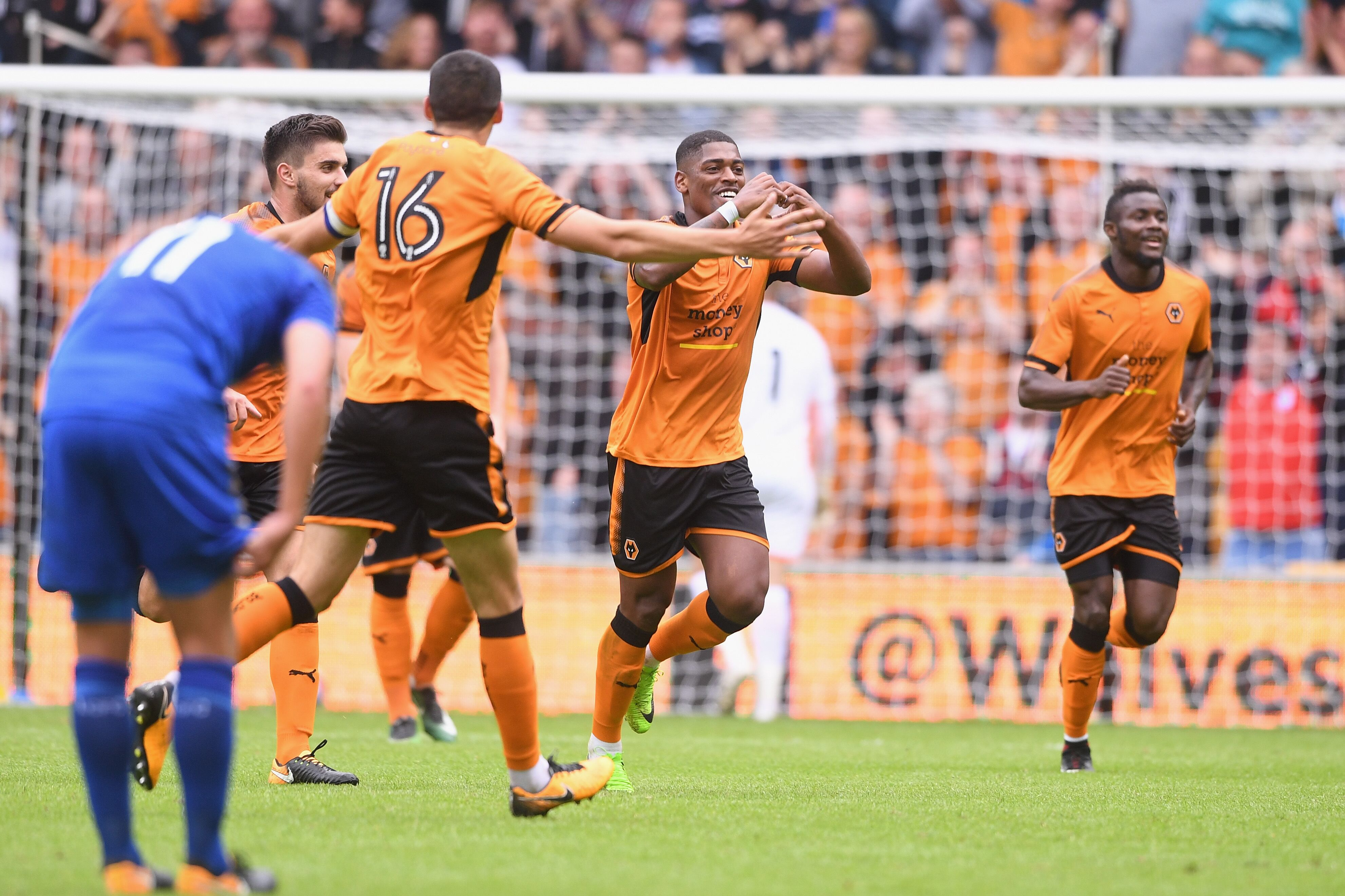 wolves vs leicester city - photo #48