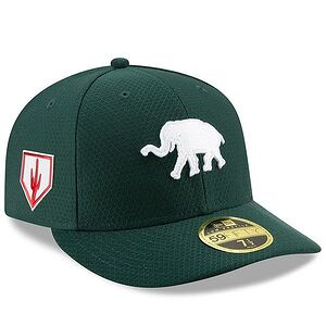 765662c175baa3 Oakland Athletics New Era 2019 Spring Training Low Profile 59FIFTY Fitted  Hat