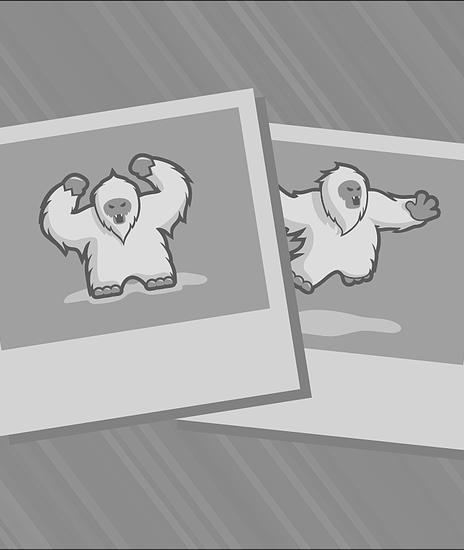 Jusuf Nurkić: Denver Nuggets Rookie Report