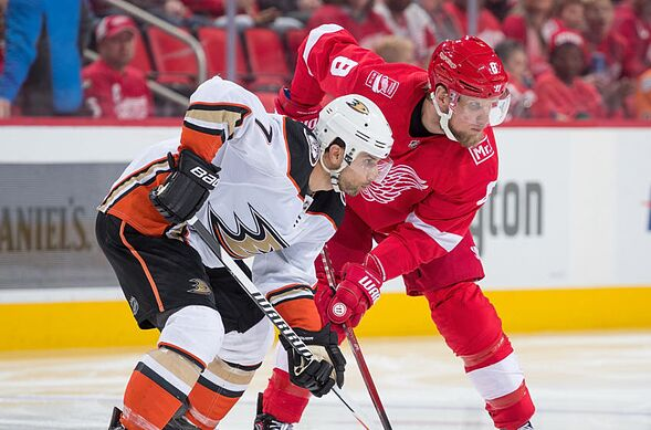 6825c92c0 Anaheim Ducks Home Opener  Interview with a Detroit Red Wings Fan