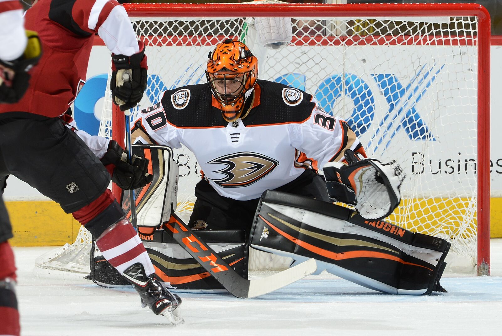 943939994-anaheim-ducks-v-arizona-coyotes.jpg