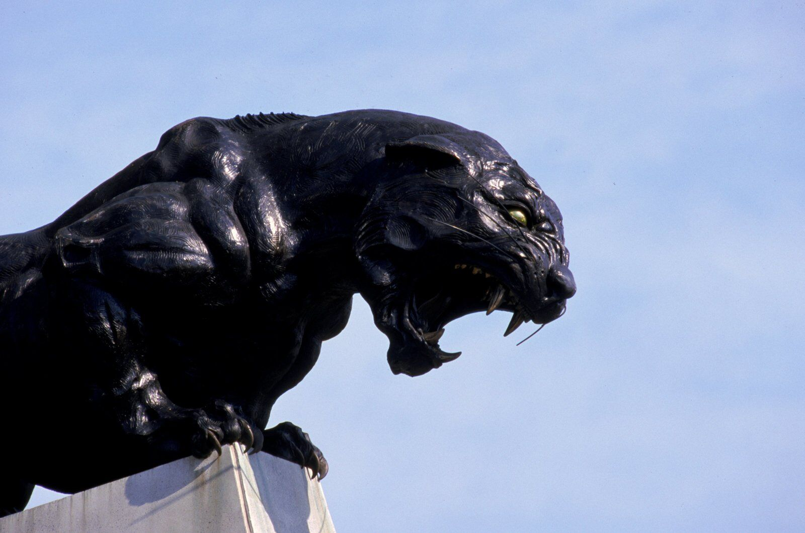 Carolina Panthers can begin breaking ground on practice facility
