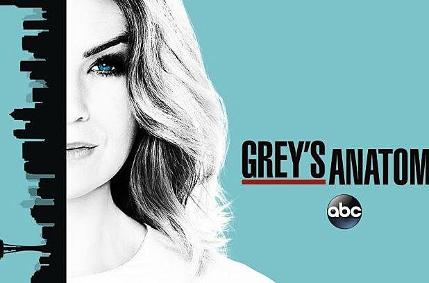 Watch Greys Anatomy Online Season 13 Episode 10 Live Stream