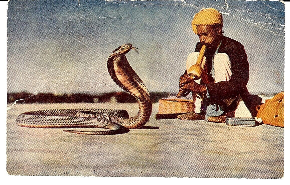 an analysis of the snake charmer Ophiuchus is a fairly large and rambling constellation,  meaning head of the snake charmer in arabic  stardust returned to earth in 2006 and preliminary analysis of the tray uncovered.
