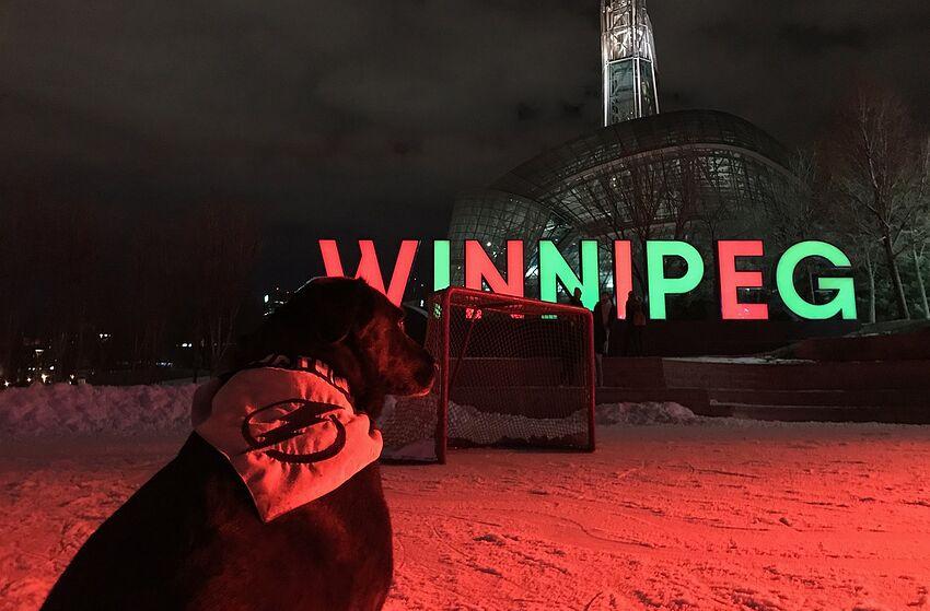Holland the Pup visits Winnipeg. Photo by Adam Vosding