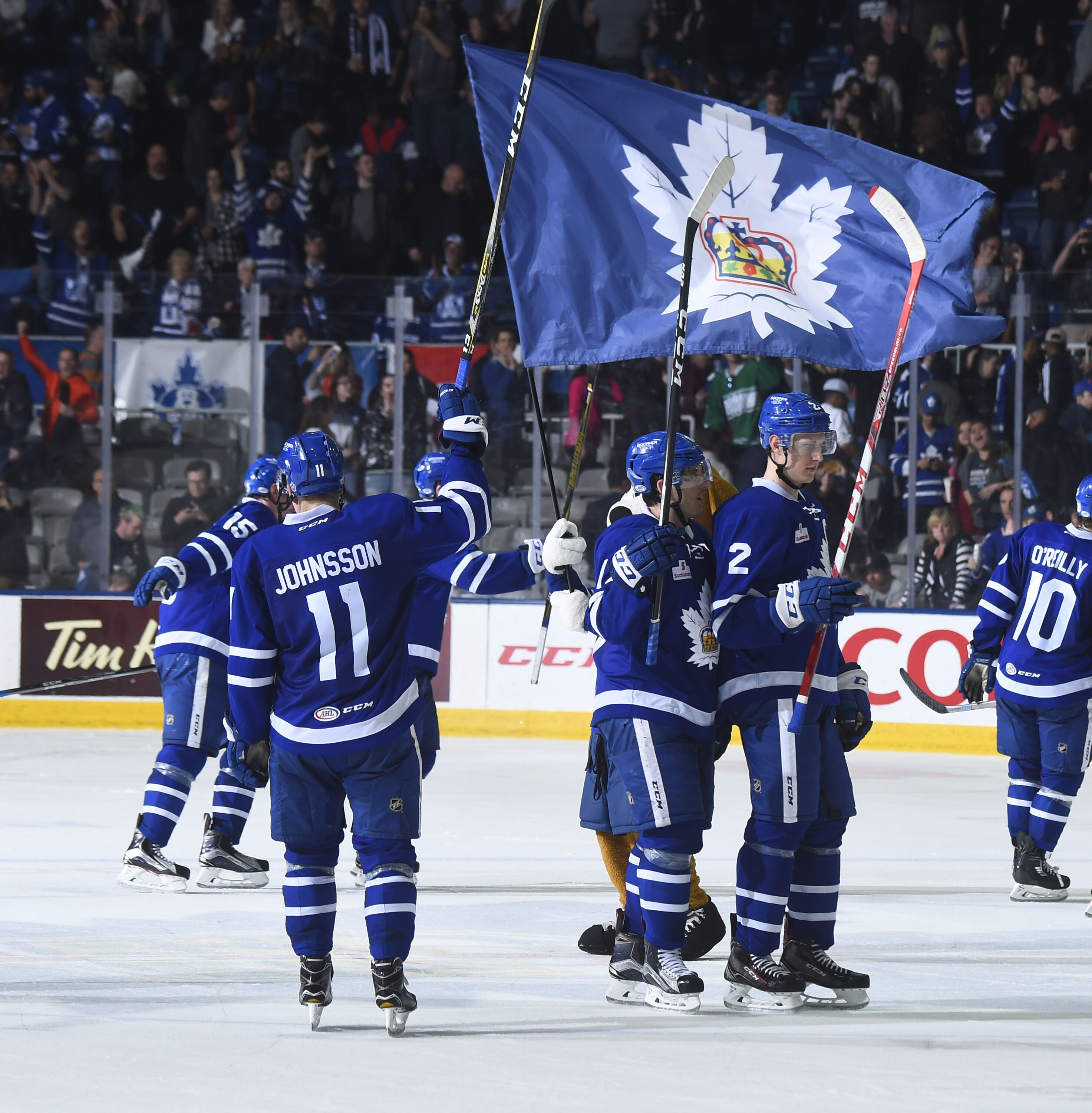 Toronto On May  The Toronto Marlies Celebrate Their Victory Over The Syracuse