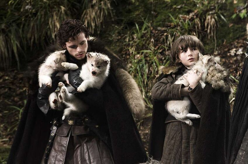 Game Of Thrones Symbology Explained Direwolves And A Dog Army