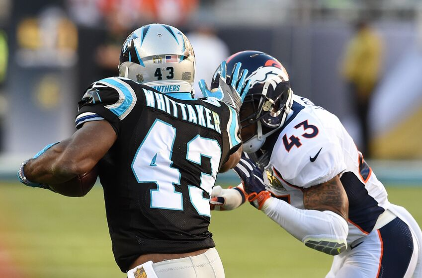 panthers lose versatility in fozzy whittaker