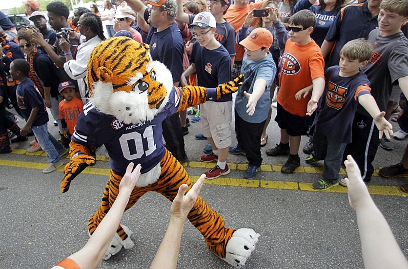 Apr 18, 2015; Auburn, AL, USA; Aubie leads the Auburn Tigers through Tiger Walk prior to the annual spring game at Jordan-Hare Stadium. Mandatory Credit: John Reed-USA TODAY Sports