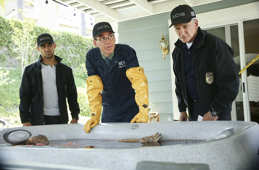 Ncis Season 16 Episode 2 The Most Disgusting Find In Ncis History