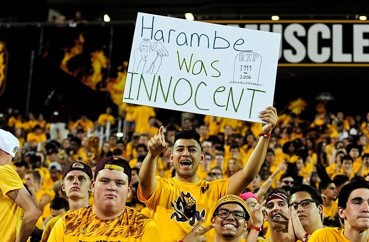 more photos 922a8 de7a0 NFL Now Allowing Fans to Waste Money on Custom Harambe Jerseys