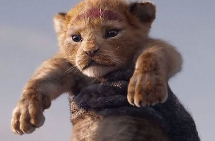 Disney Releases New Trailer Poster For Live Action Lion