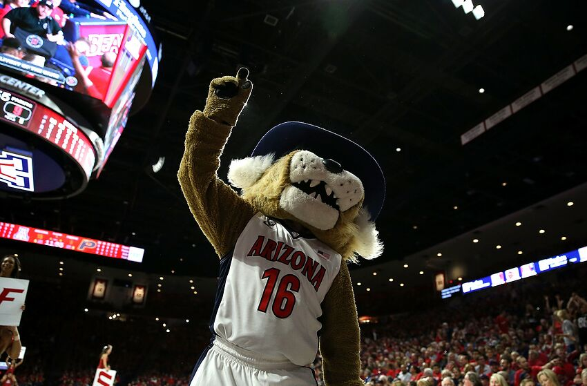 Basketball | The Daily Wildcat