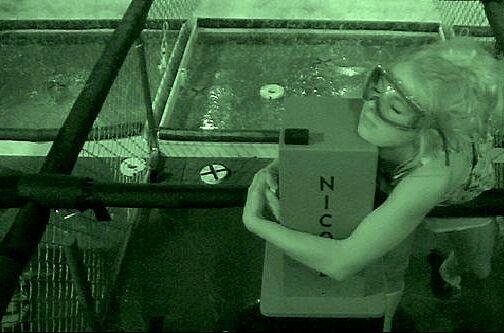 Big Brother Season 18, Episode 30 Live Stream Watch Online-7238