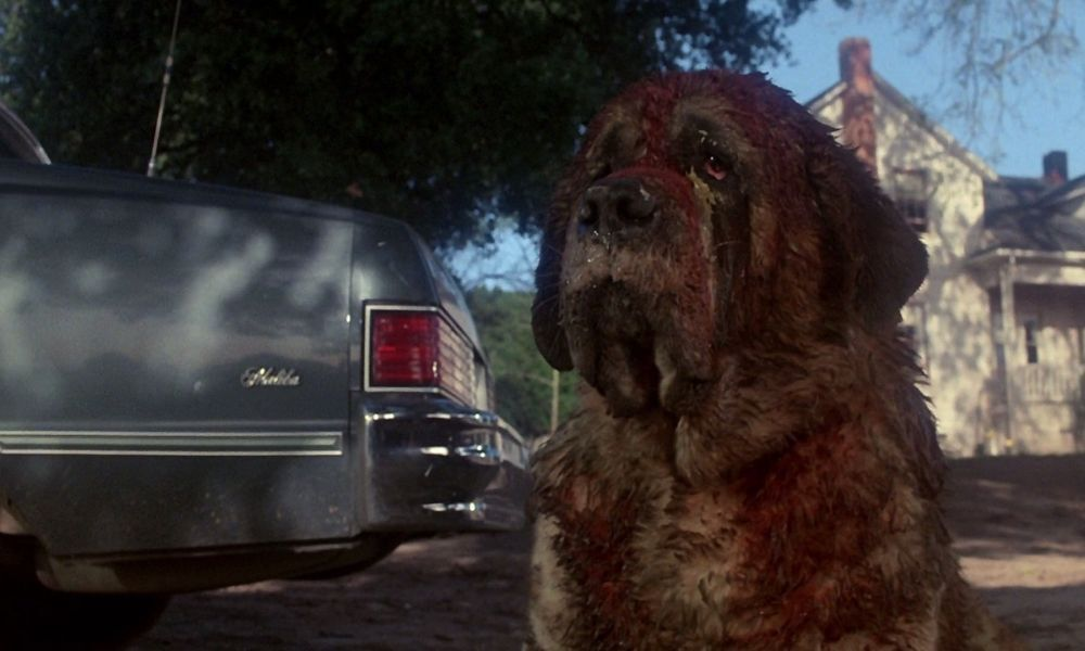 Stephen King: Eureka! taking a bite out of Cujo with limited edition Blu-ray