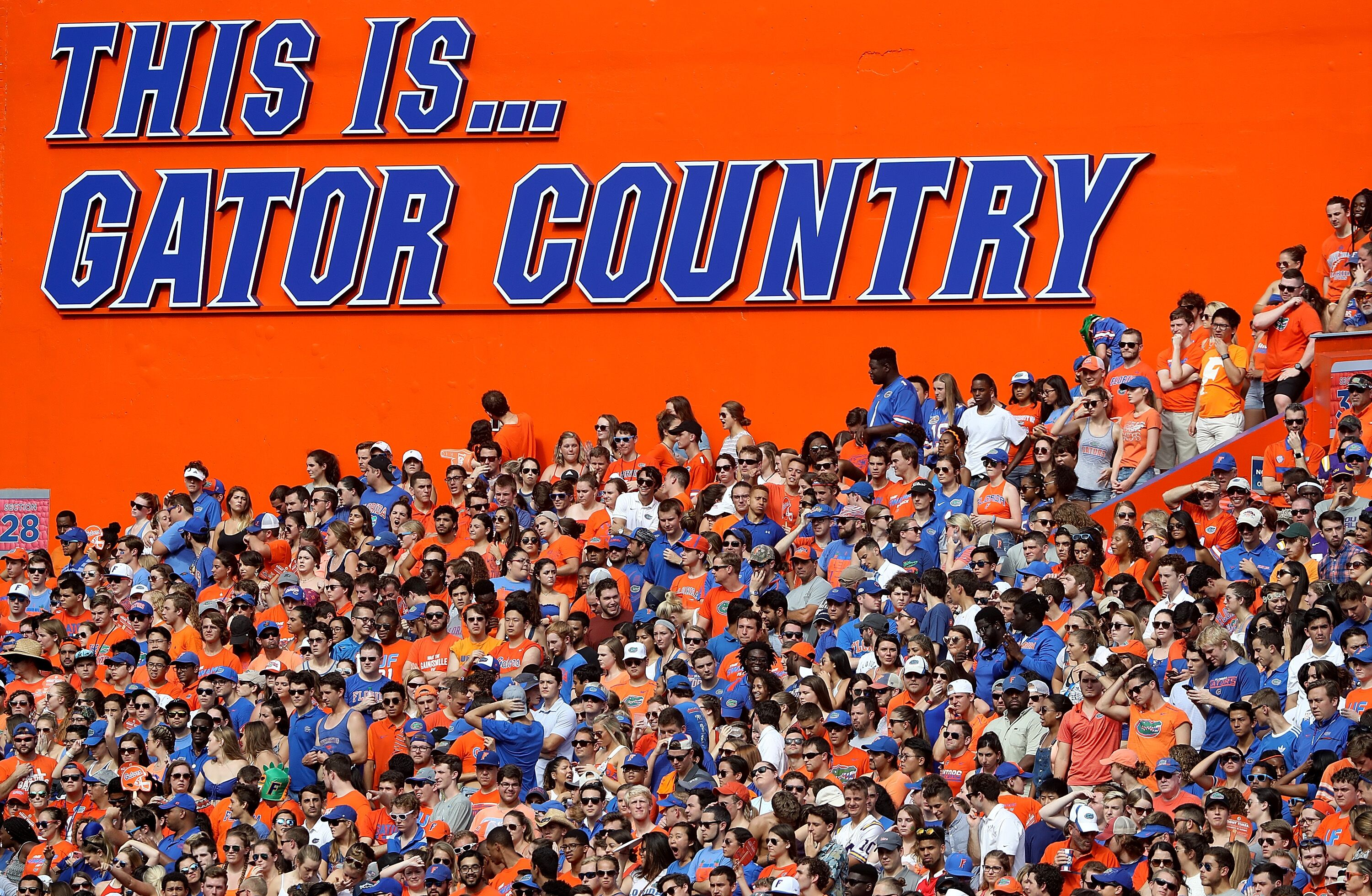 Tennessee football: Photo gallery from Vols' 34-3 loss to Florida Gators