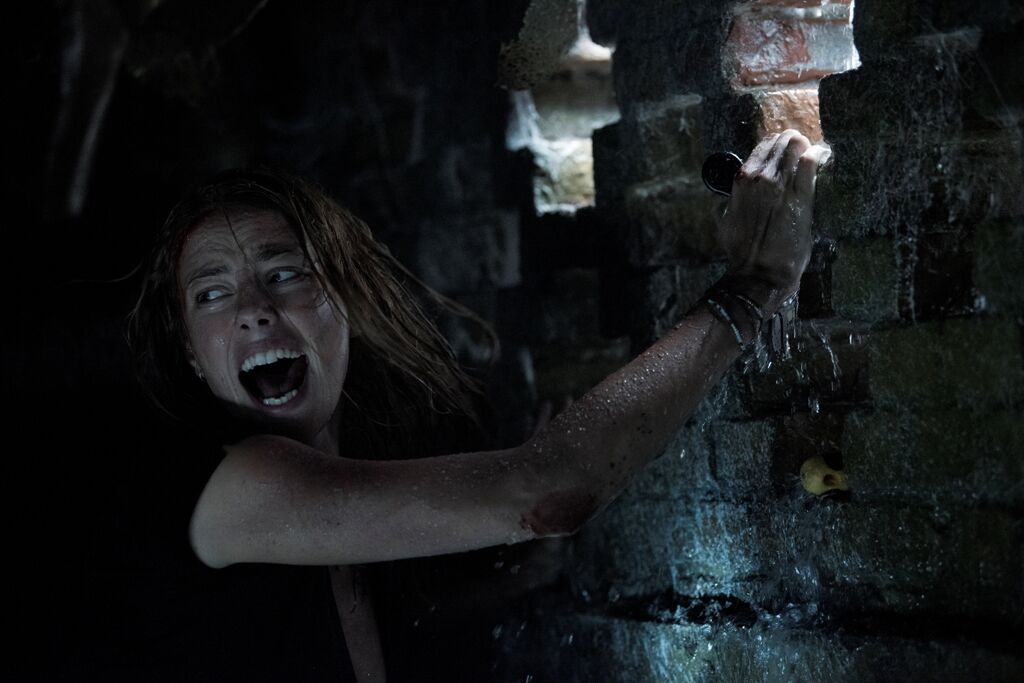 Crawl coming to DVD and Blu-ray in October 2019