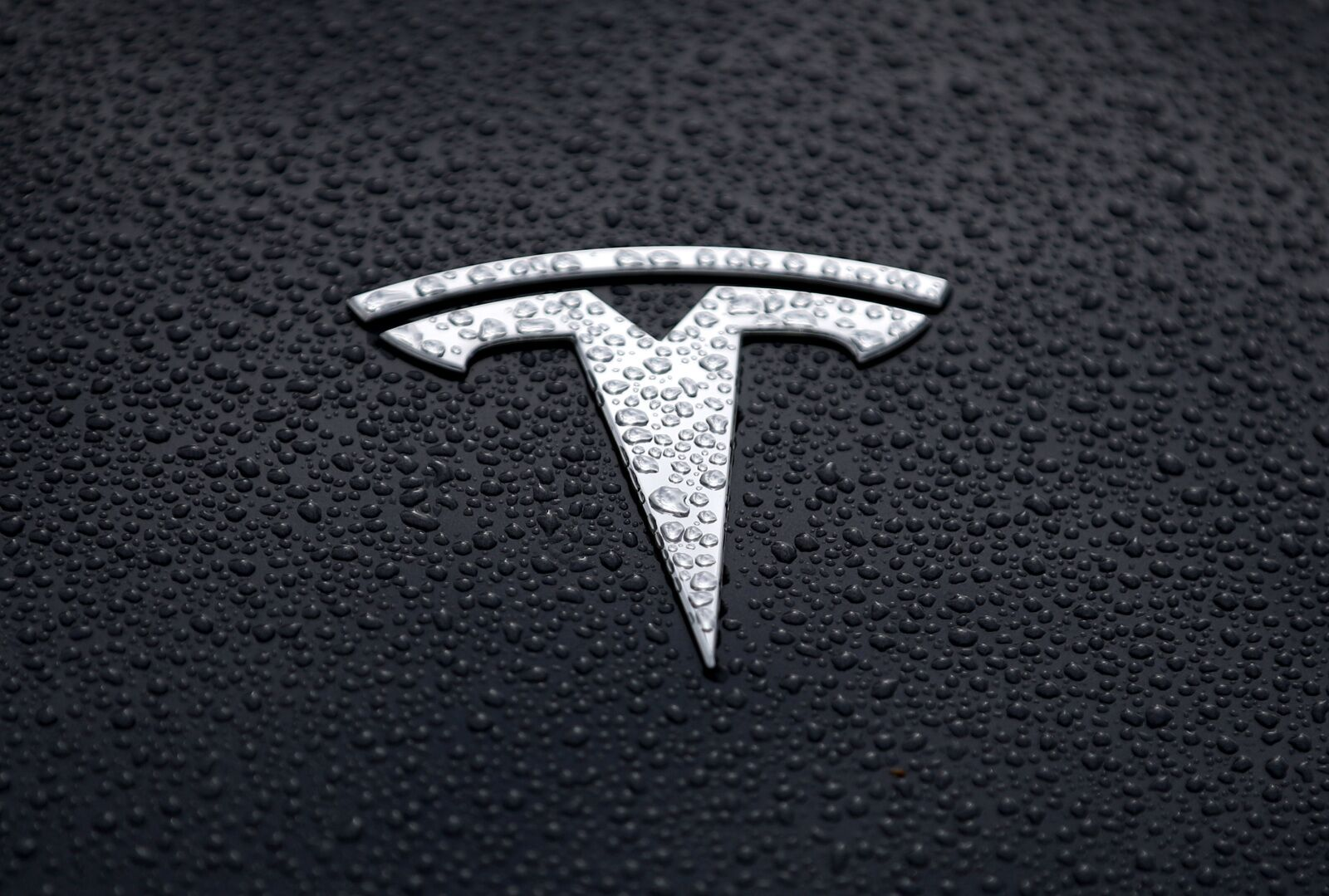 Cybertruck: The Official Name of Tesla's EV Truck?