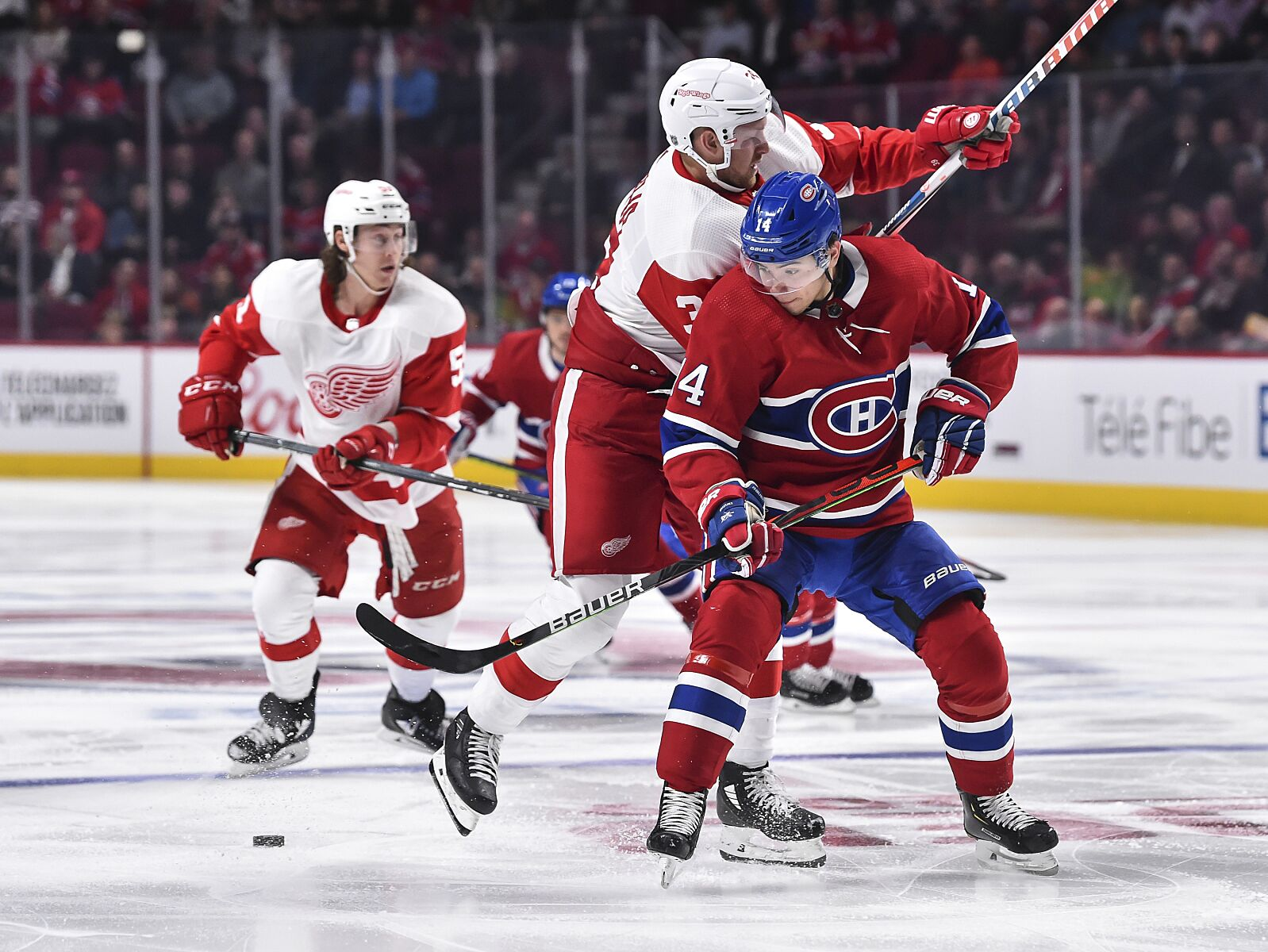 Montreal Canadiens: What do the stats say of Nick Suzuki and Cale Fleury?