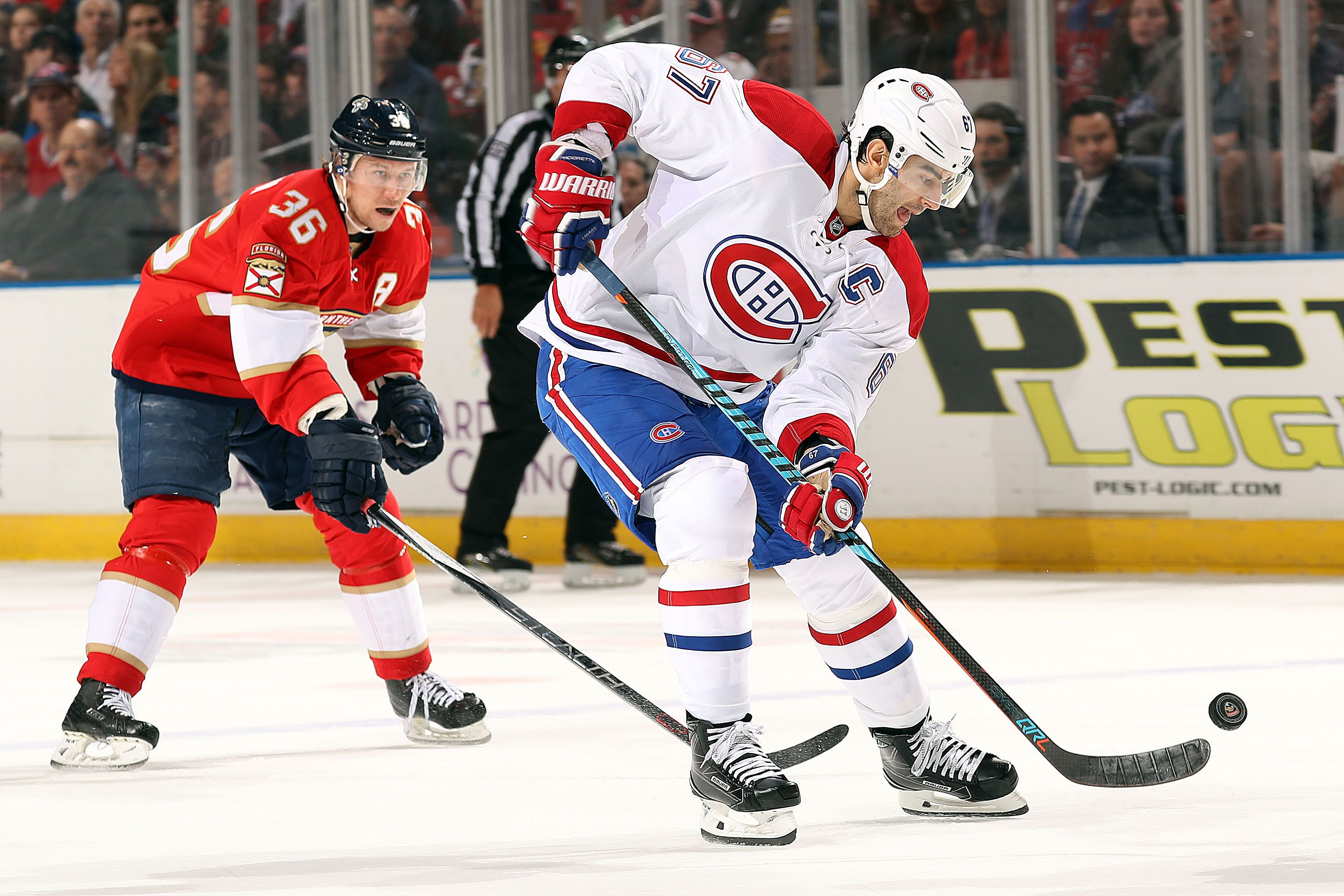 Montreal Canadiens  A link to the Florida Panthers in the future 26438be97