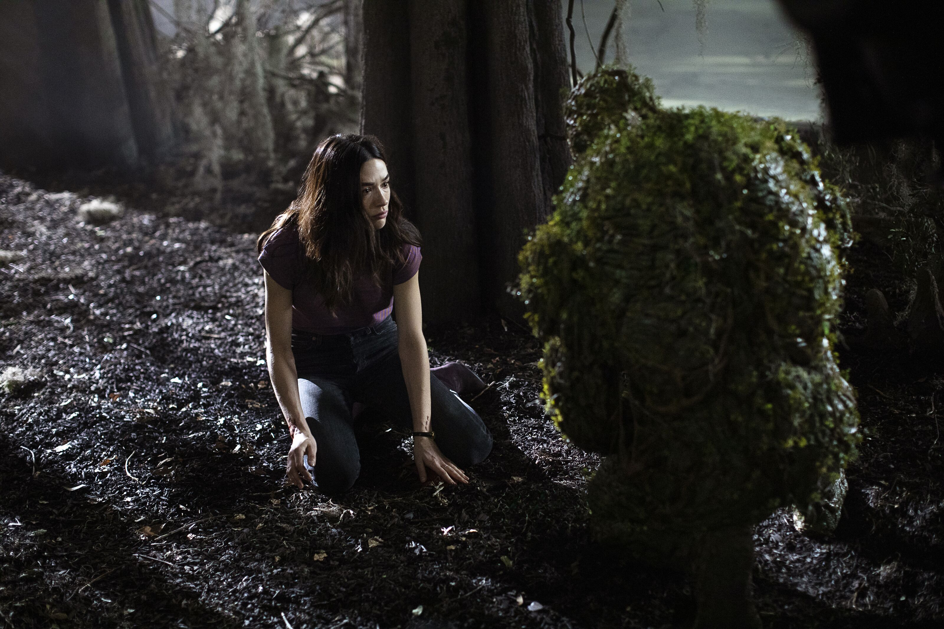 Swamp Thing season 1, episode 4 review: Darkness on the Edge