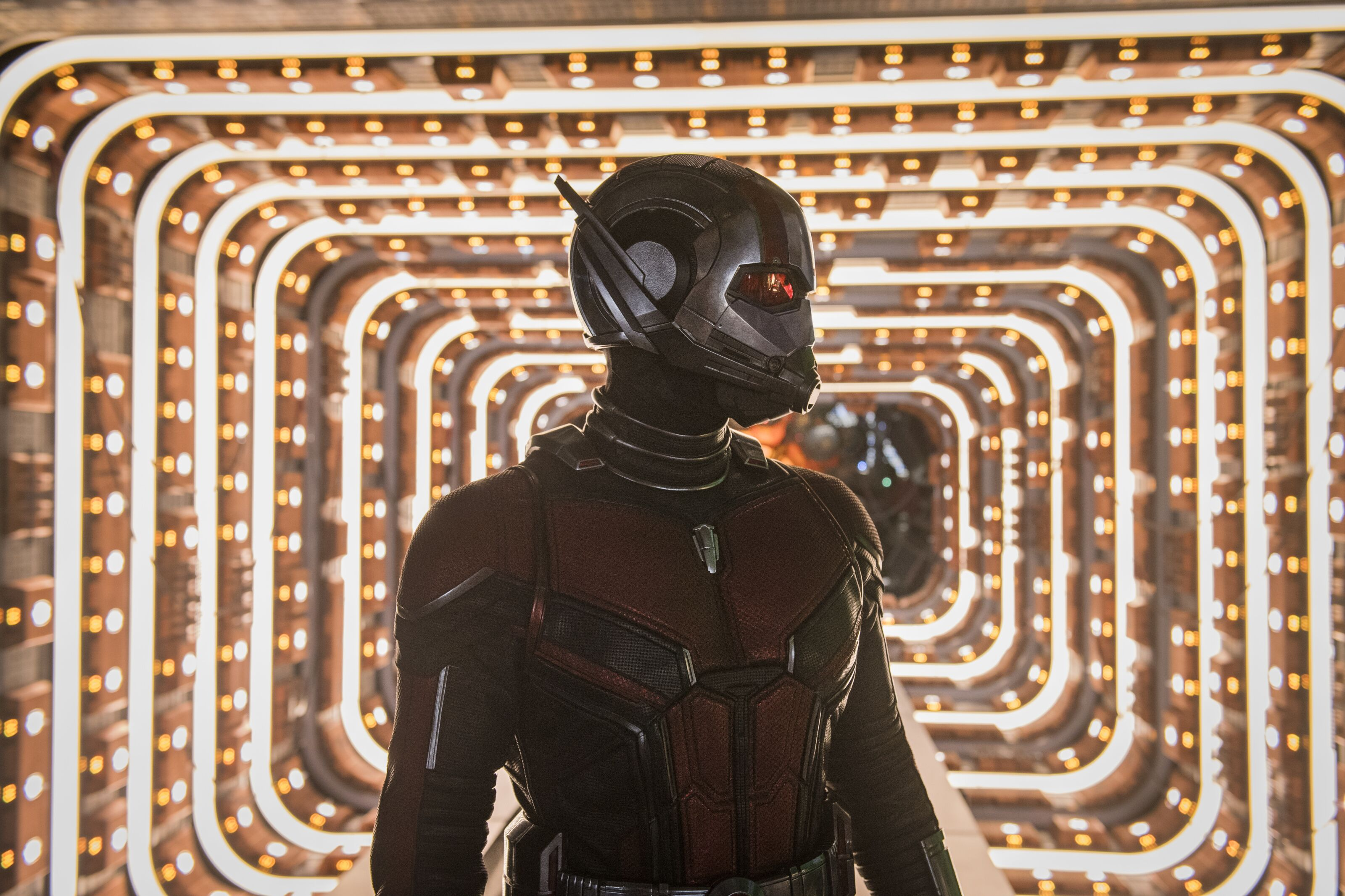 MCU: 5 Things we really want to see in an Ant-Man 3