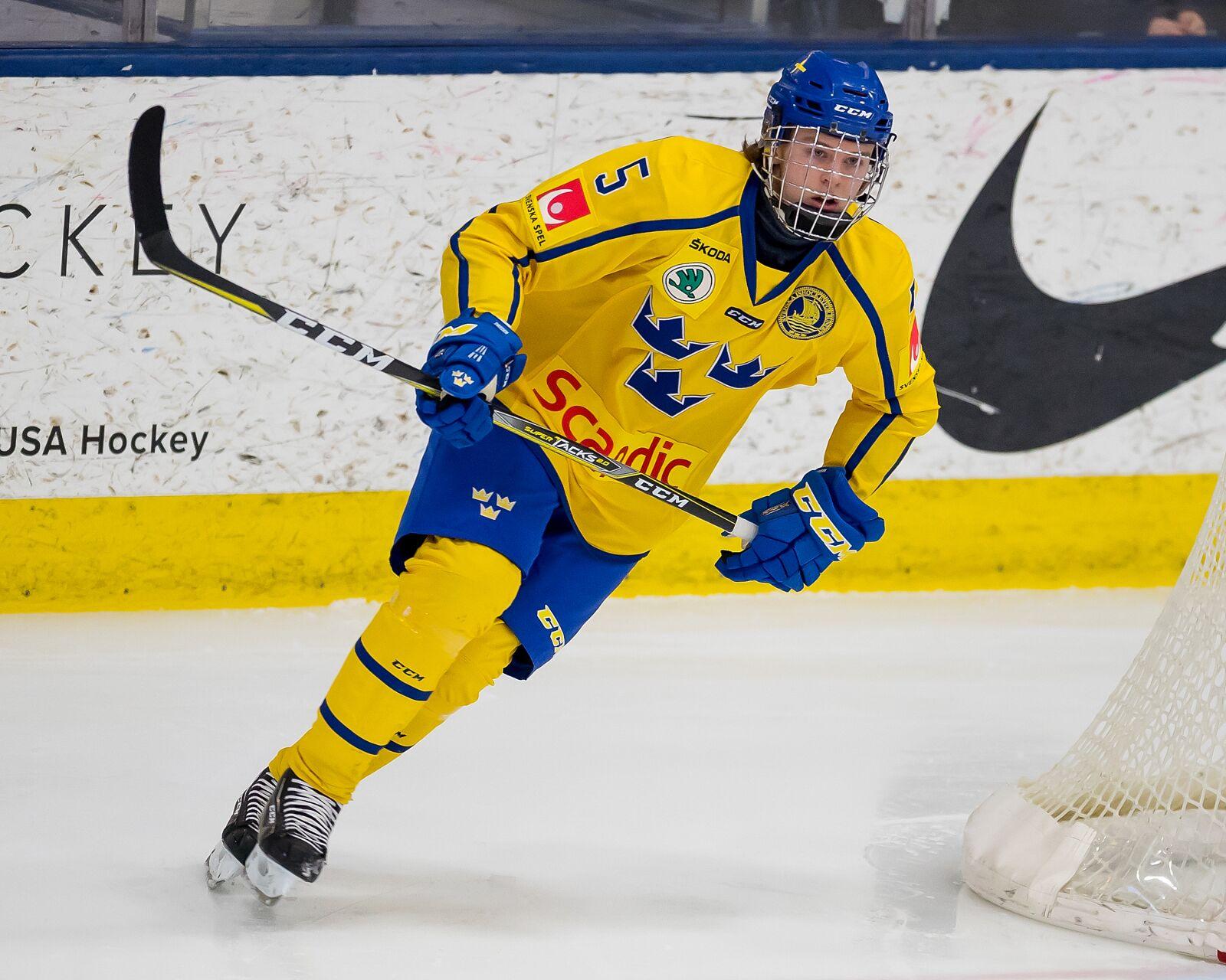 e7432db059c9d New York Rangers draft target 2018  Adam Boqvist