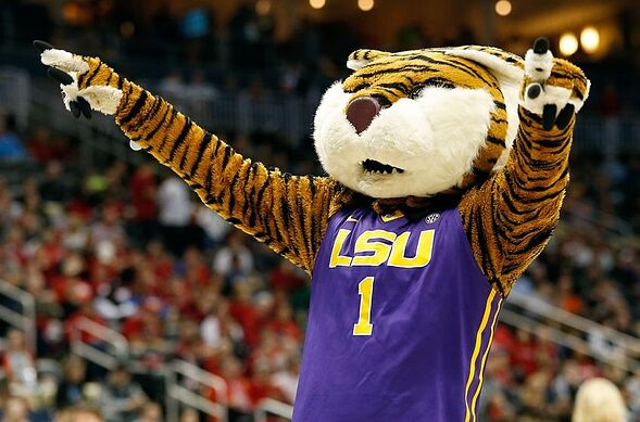 lsu basketball tigers primed for turnaround after disappointing