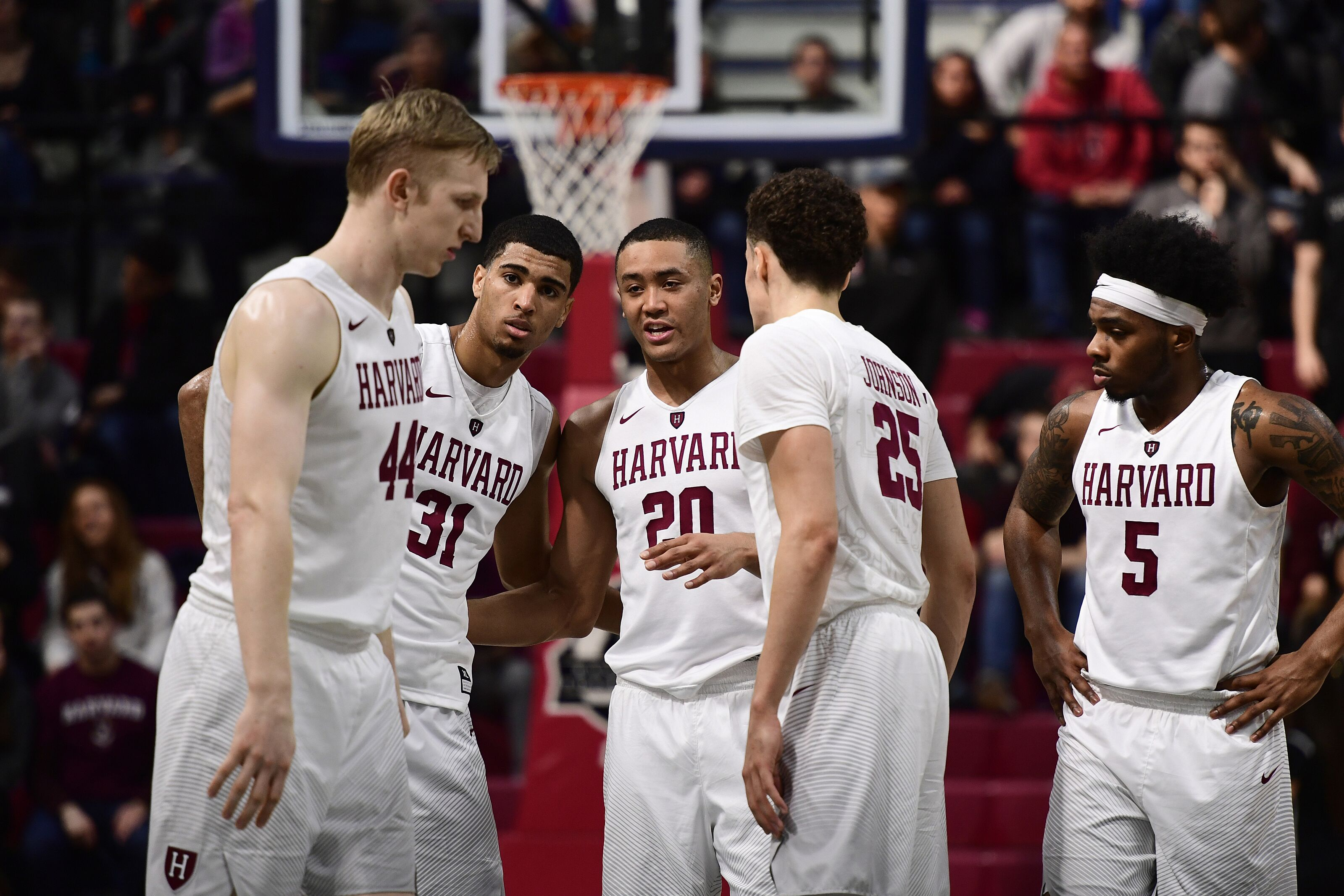 harvard basketball: 2018-2019 season preview for the crimson