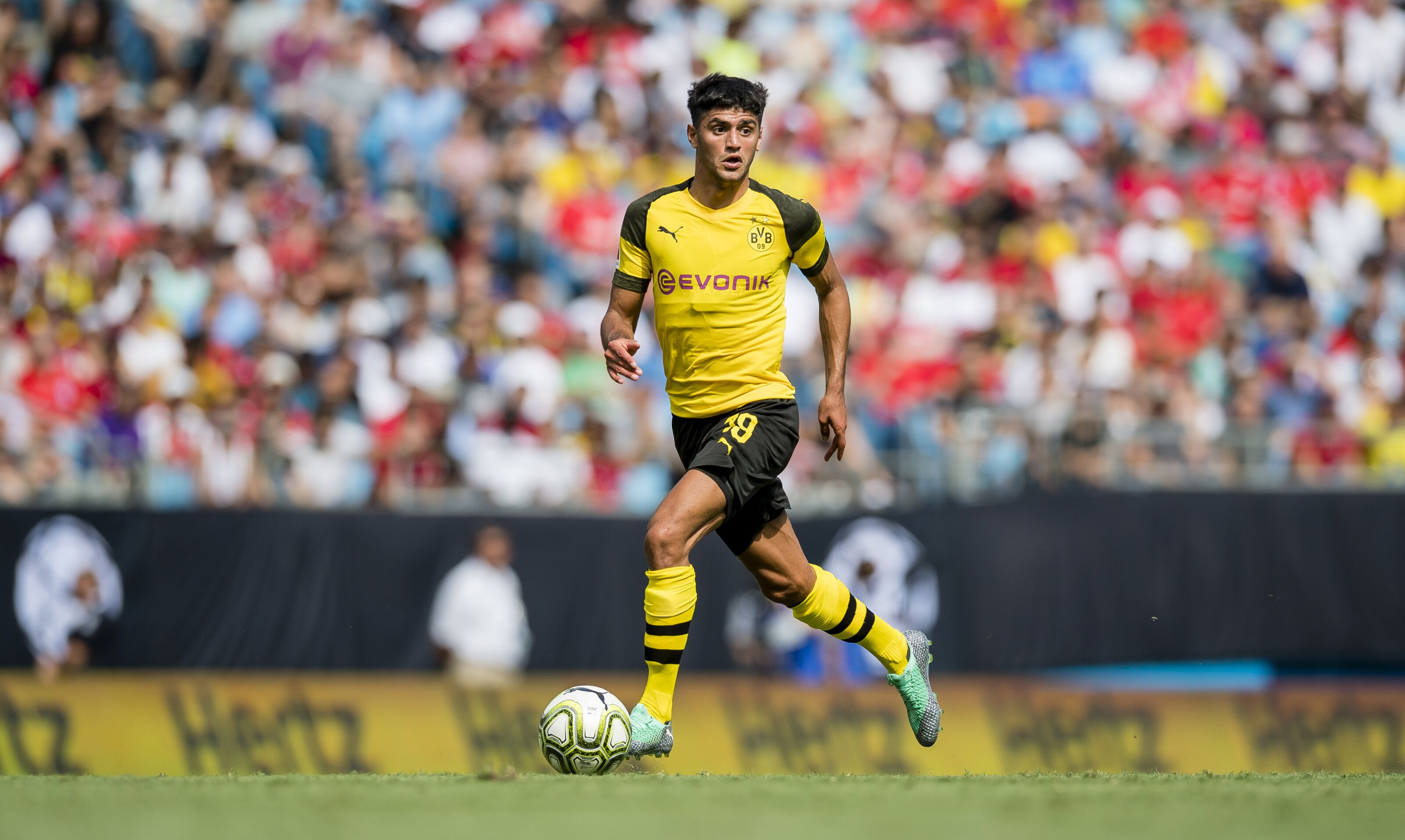 Image result for Mahmoud Dahoud 2018/19
