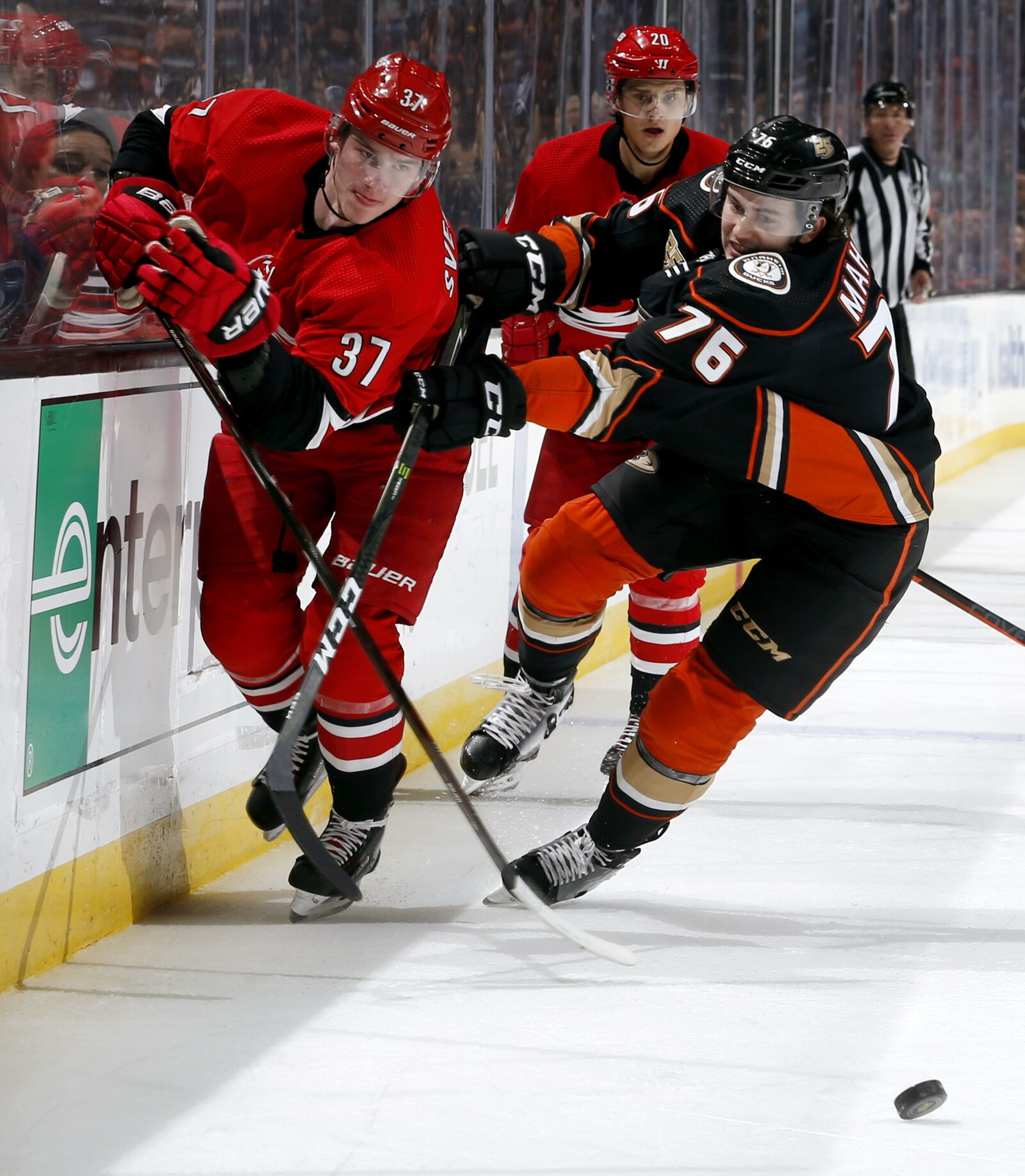 Carolina Hurricanes Fantasy Picks After Dark Verses Ducks