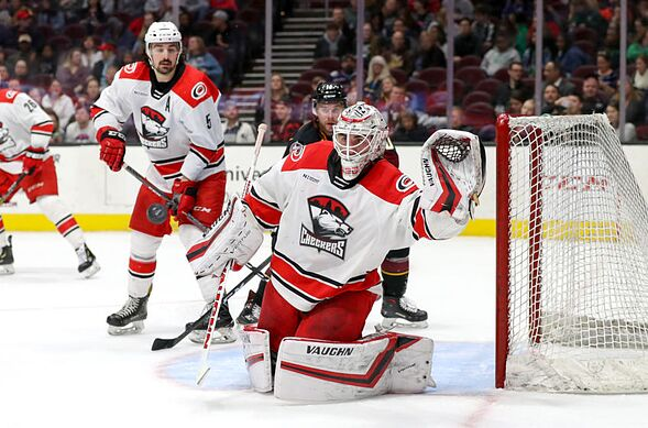 Carolina Hurricanes Top 5 Checkers Who Could In Nhl Next Season