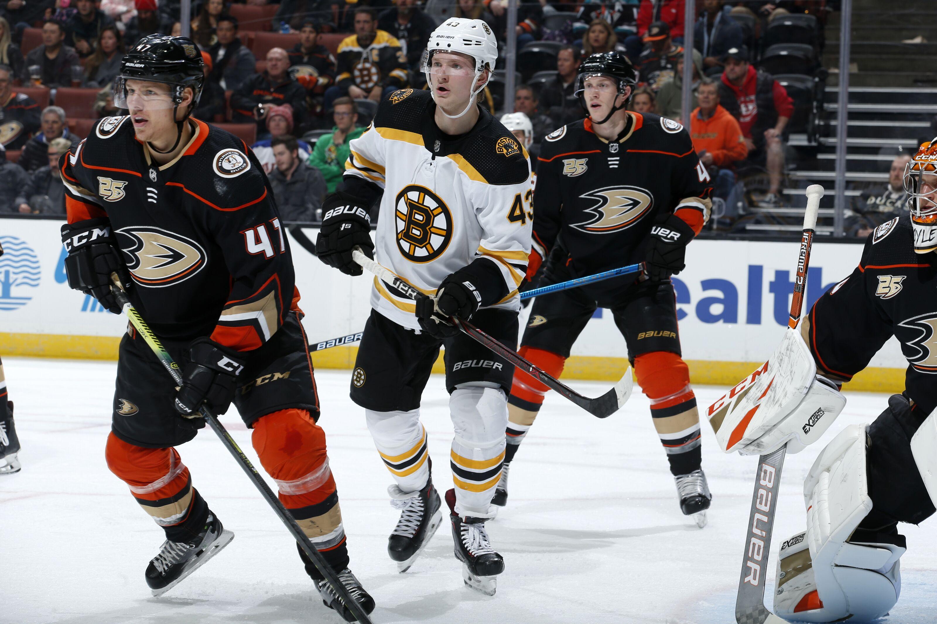 Anaheim Ducks vs Boston Bruins: Start time, live streaming, TV info