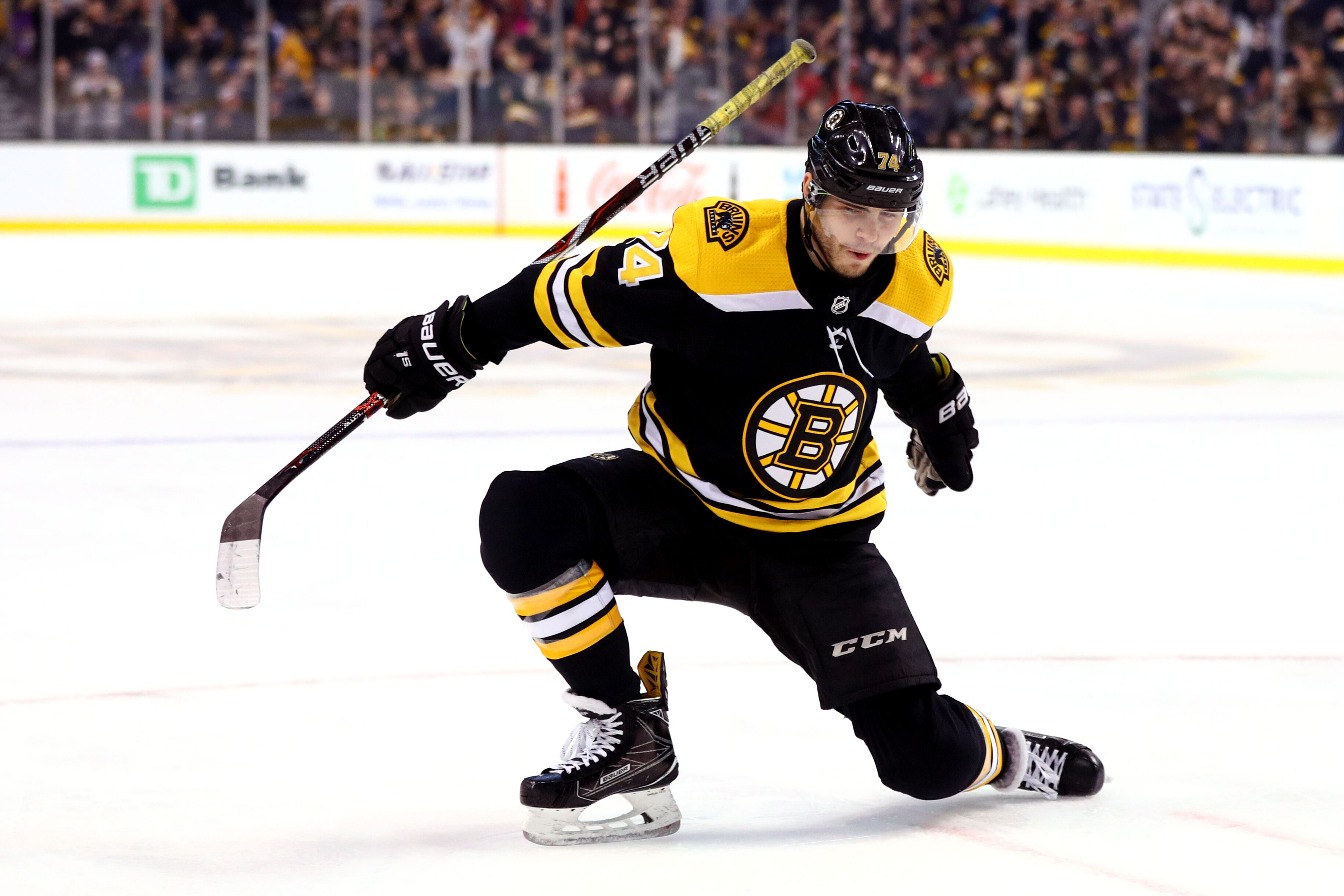 Boston Bruins GameDay 39: Cyclones & Hurricanes Can't Stop ...