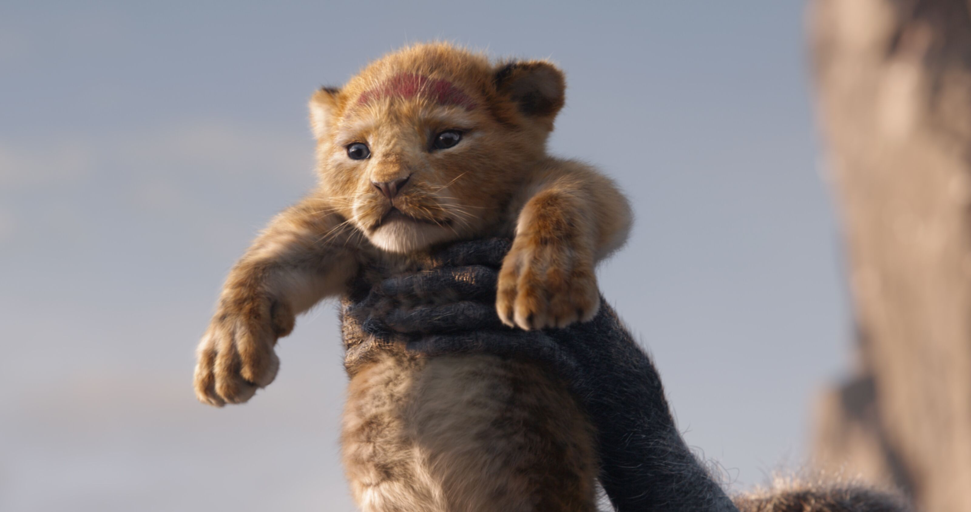The Lion King is the live-action Disney movie we didn't need, but it had some bright spots