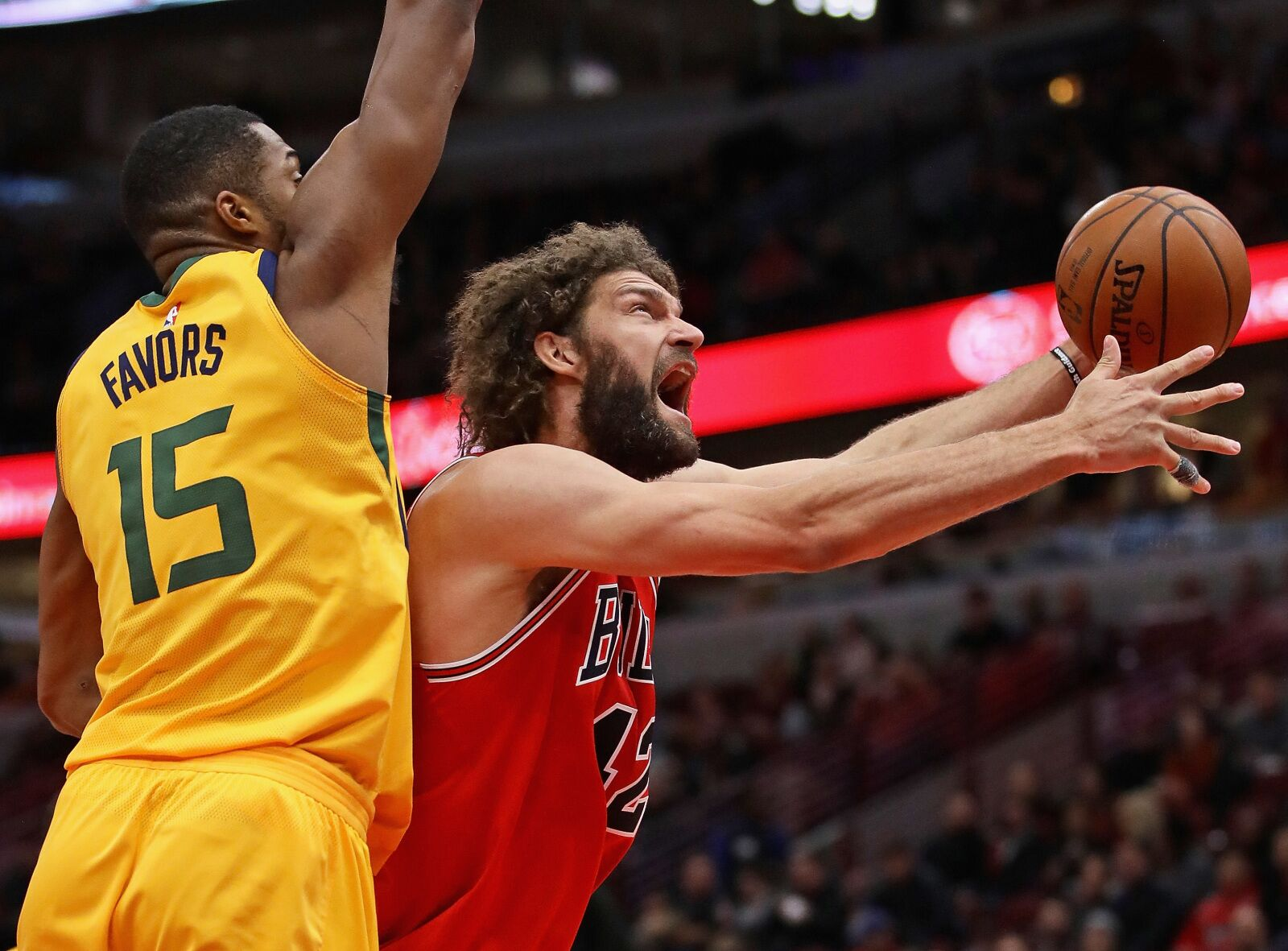 c713315ea2a207 Chicago Bulls Rumors  How Robin Lopez could be a Golden State Warrior