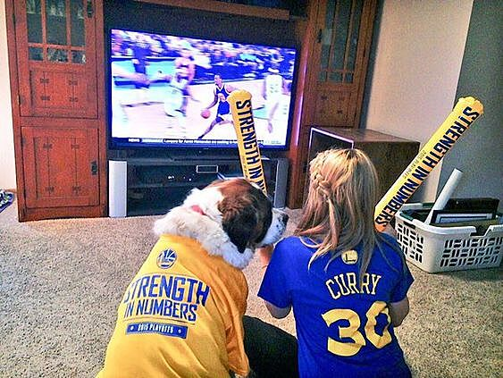 huge selection of 5048a c7cca Golden State Warriors dogs celebrate the NBA Finals win (Photo)