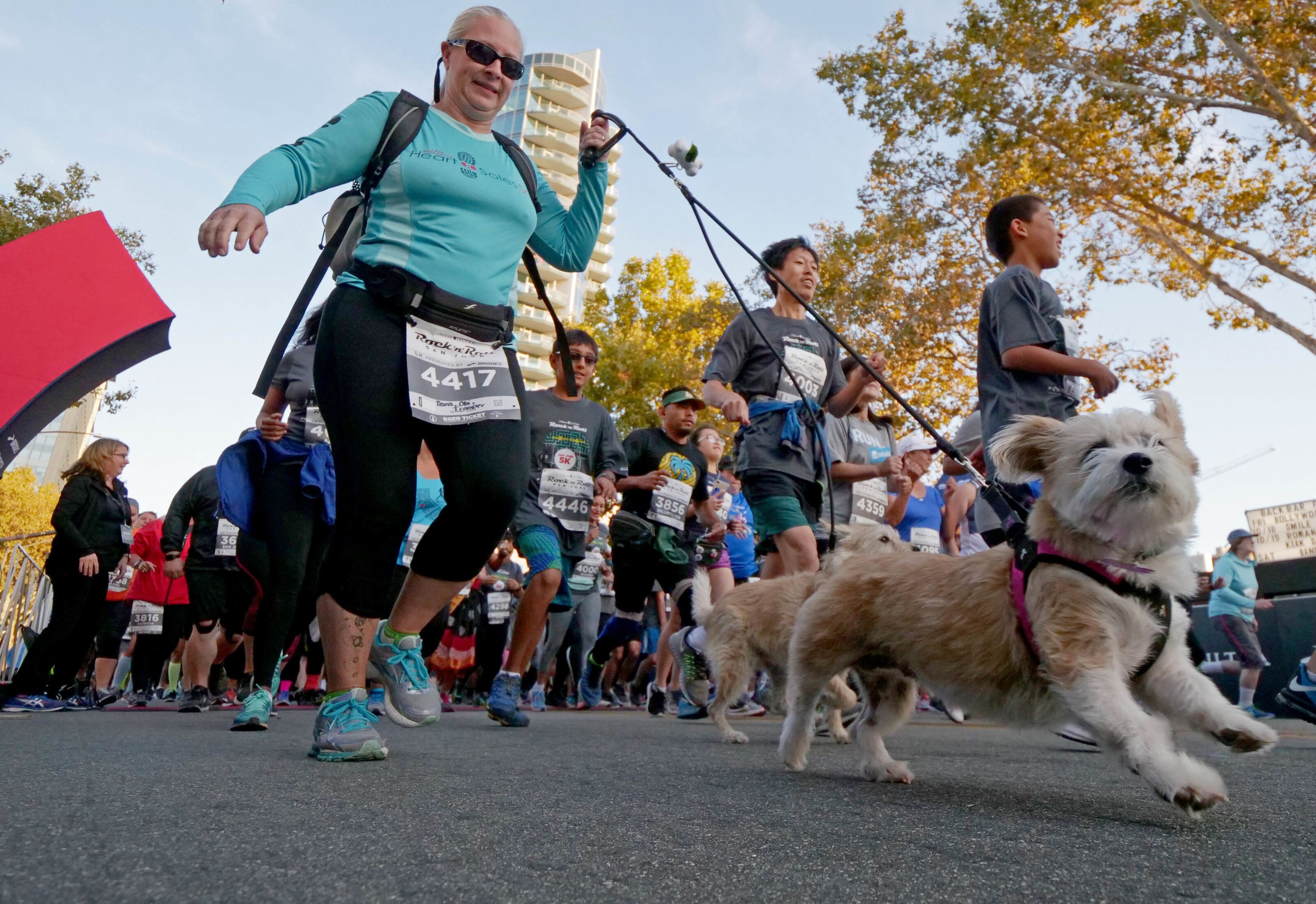 2019 Race for the Rescues 5K to be held this weekend at the Rose Bowl