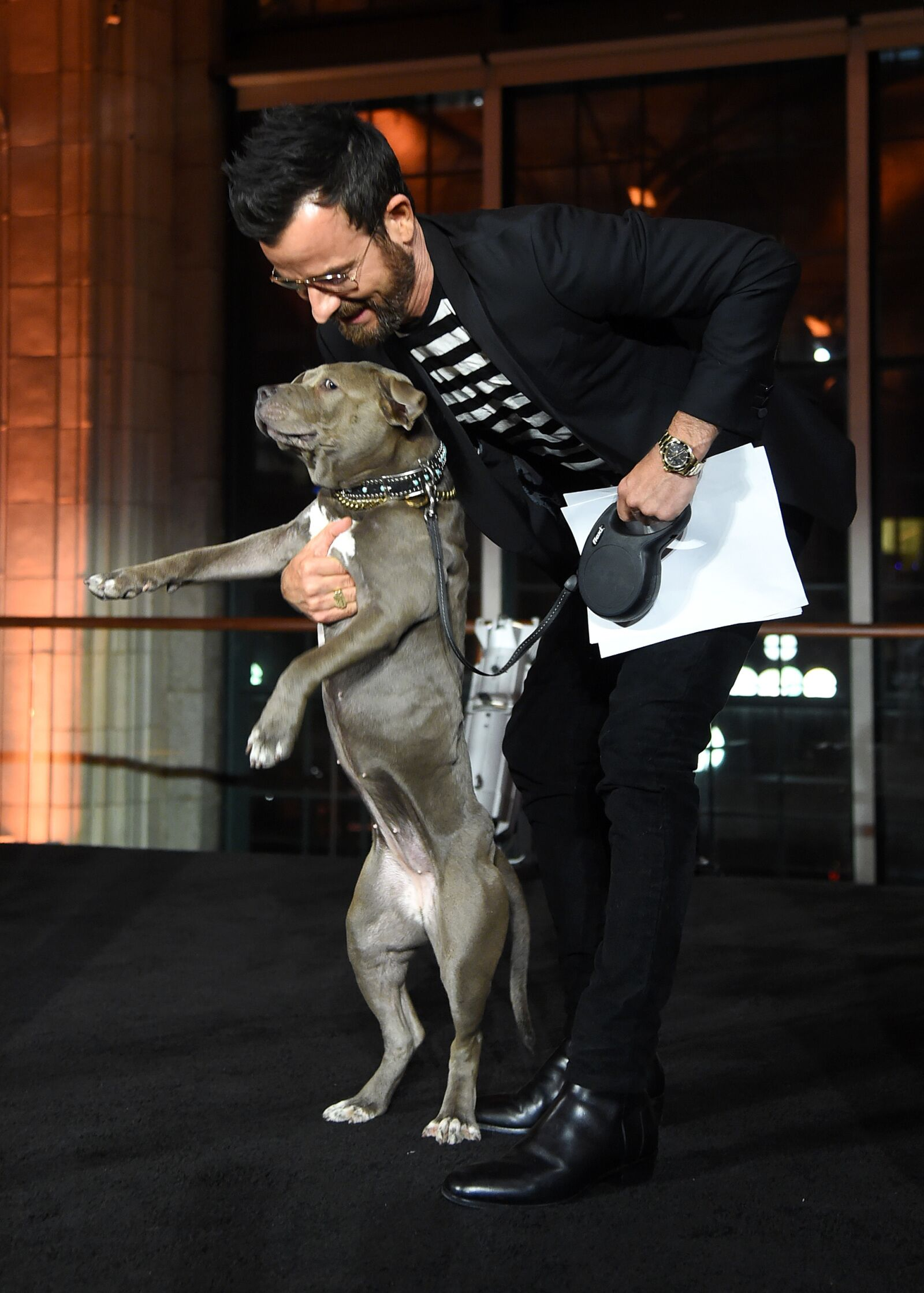 Justin Theroux's dog makes cameo in 2019 Lady and the Tramp