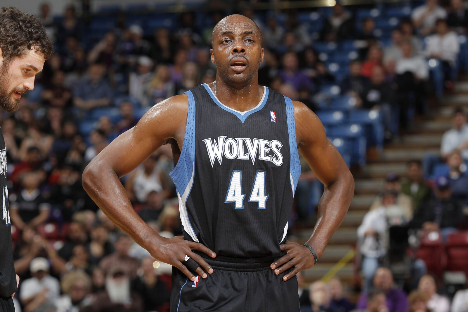 Image result for minnesota timberwolves anthony tolliver