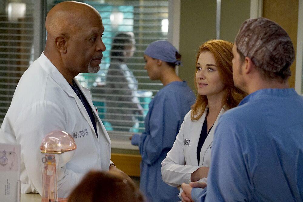 Greys Anatomy Season 13 Episode 14 Watch Online