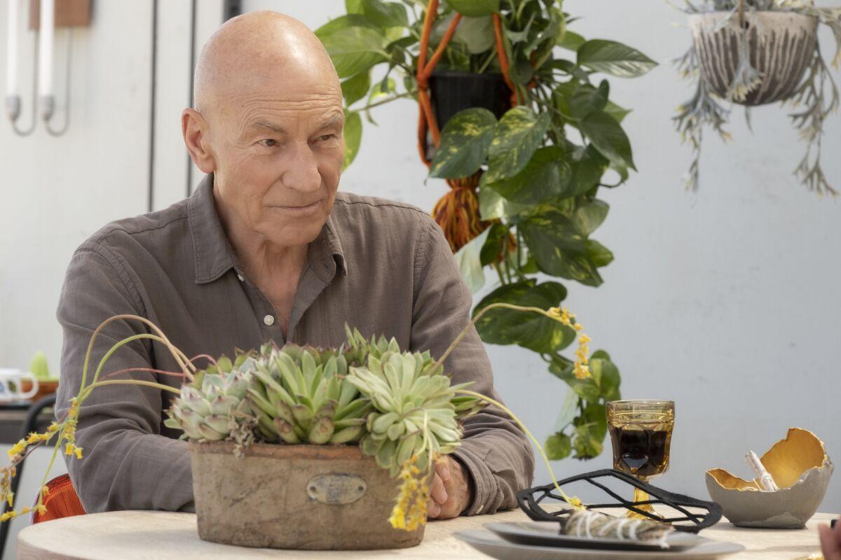 Star Trek: Picard's stellar premiere is a fitting return for the sci-fi legend