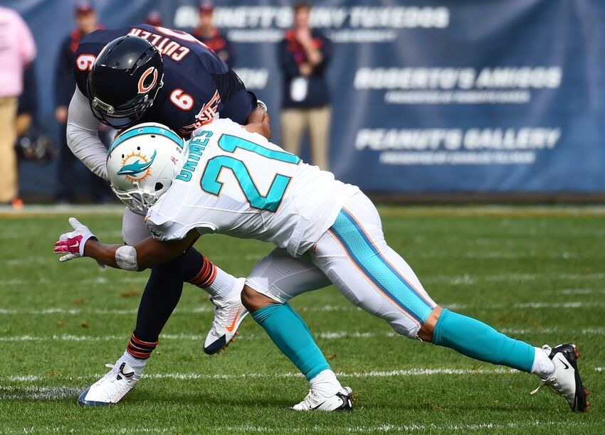 bears vs dolphins