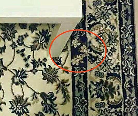 Here's where that stupid iPhone is on that stupid carpet (Photo)