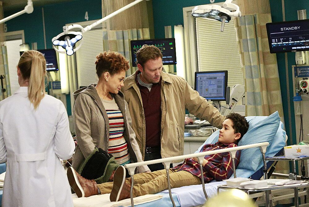 GreyS Anatomy Season 13 Episode Guide