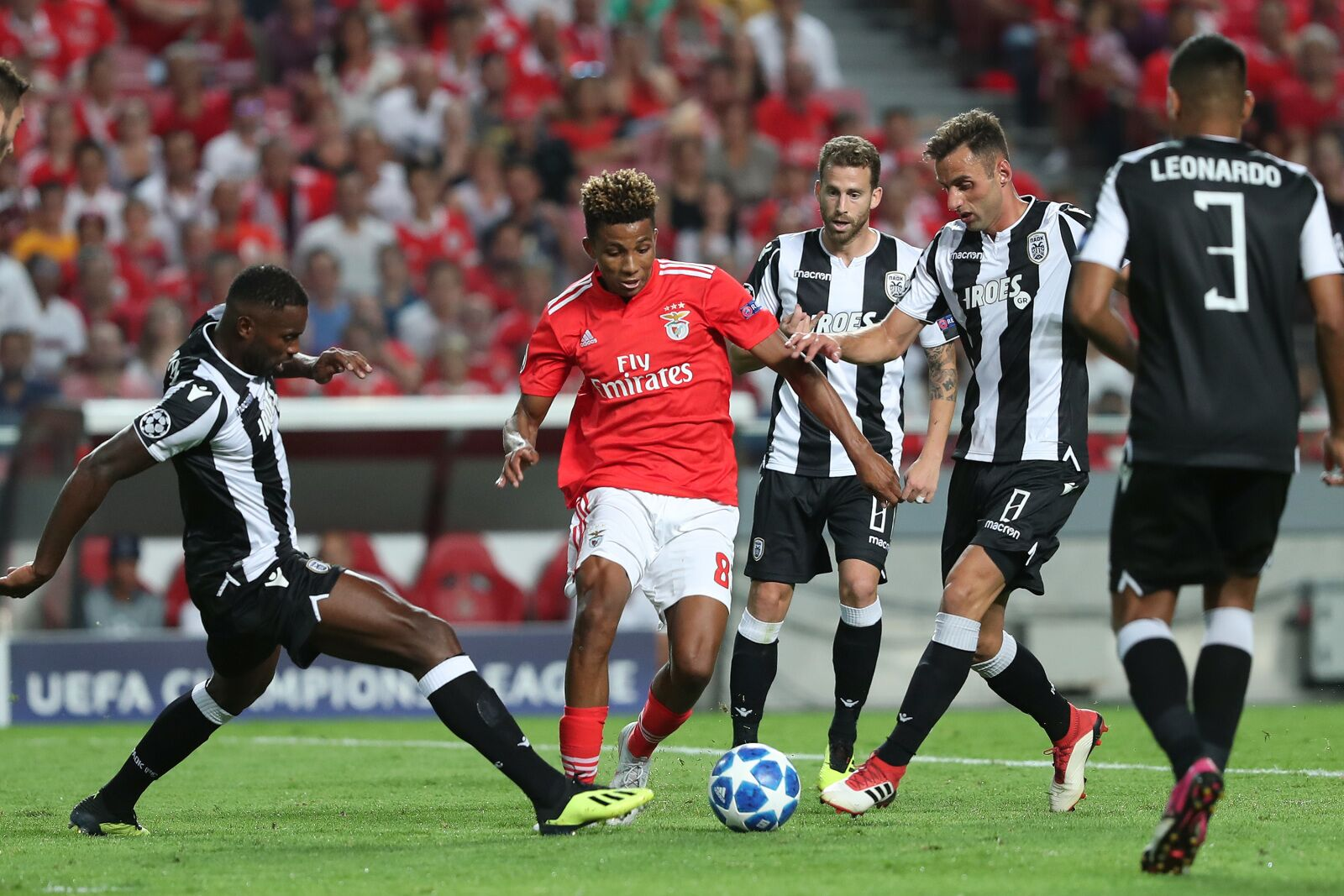 Benfica vs  Ajax live stream: Watch Champions League online