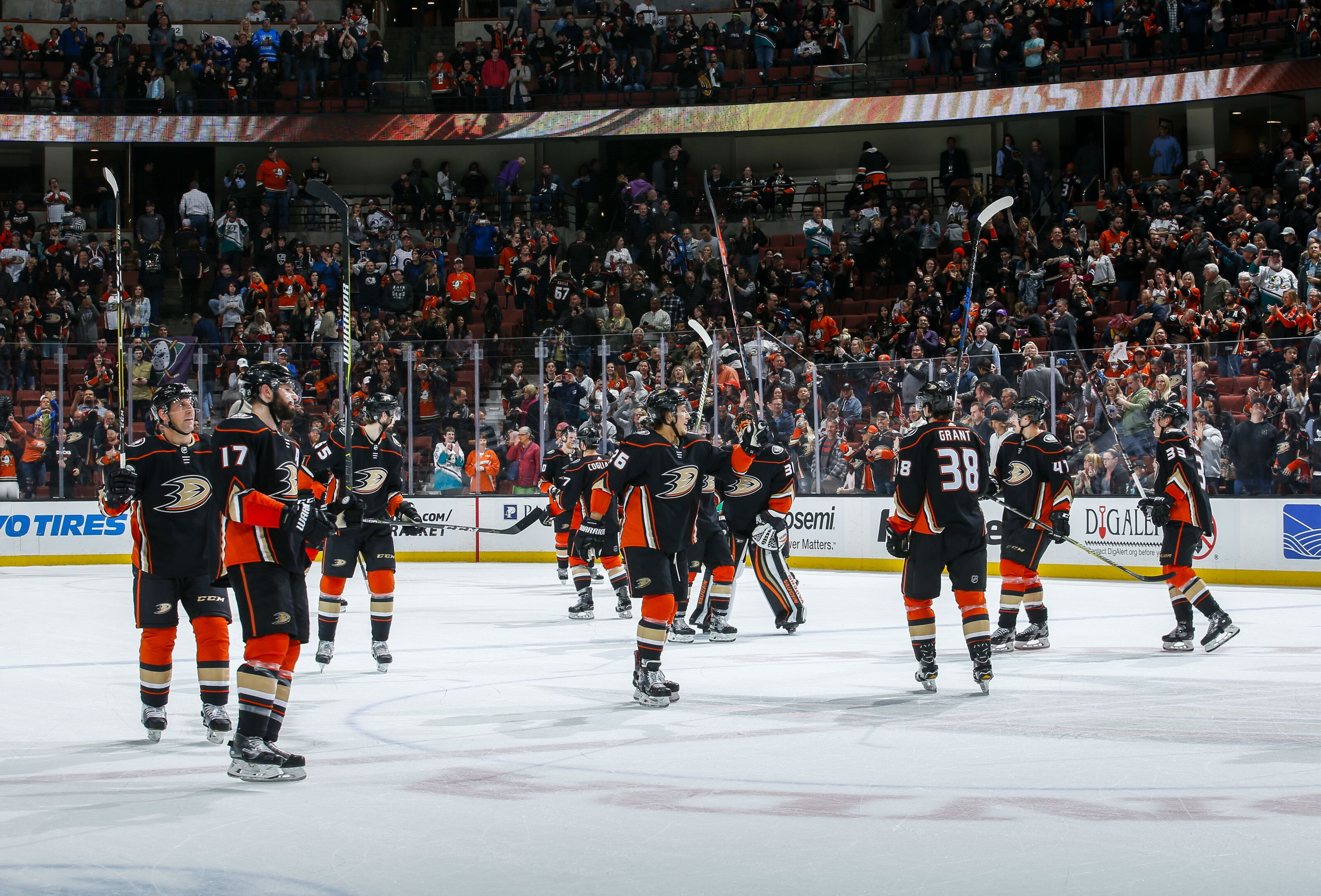 5 reasons why Anaheim Ducks will win Stanley Cup - Page 4 38aeb4960