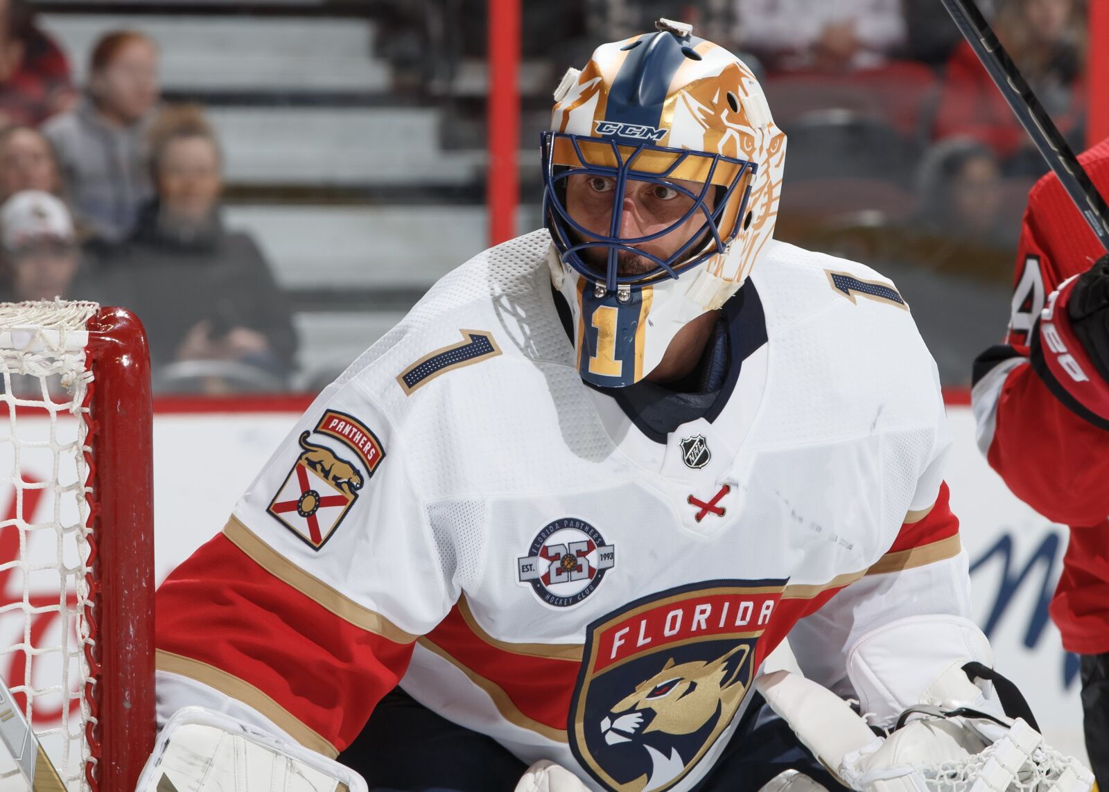 Roberto Luongo Should Go Down As The Most Underappreciated Goalie Ever